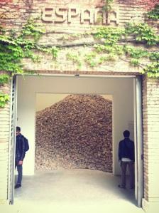 Paglione spagnolo, Biennale di Venezia 2013, opera di Lara Almarcegui