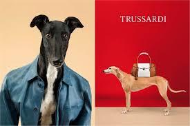 Campagna Trussardi 2014