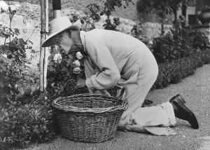 hesse in giardino