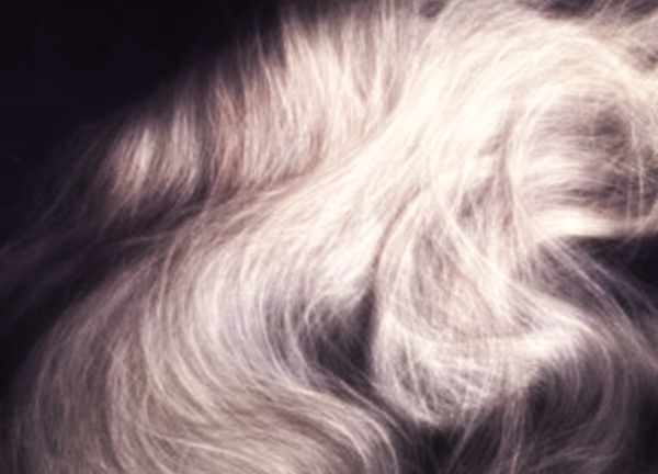 coprire-i-capelli-bianchi
