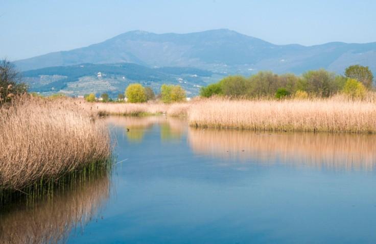 Oasi_di_Focognano_-_panoramica-1024x667.jpg